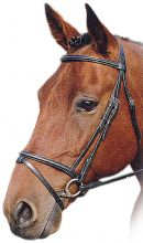 Sabre Premier Snaffle Bridle  (English & Flash) (1)